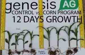seed treatment & liquid in furrow fertilizer