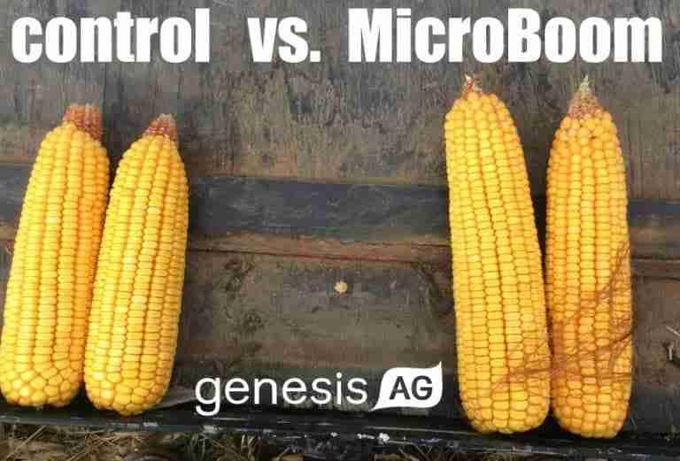 control v microboom img009 v 2 6