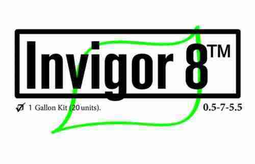 invigor 8 final