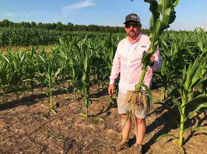 Jason corn
